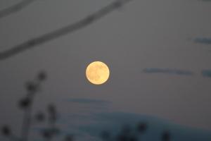 Moon before the sun set